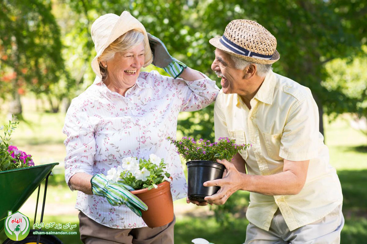 كاهش ريسك فاكتورهاي قلبي در سالمندان